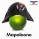Mapoleone Esselunga giochi di parole pubblicità